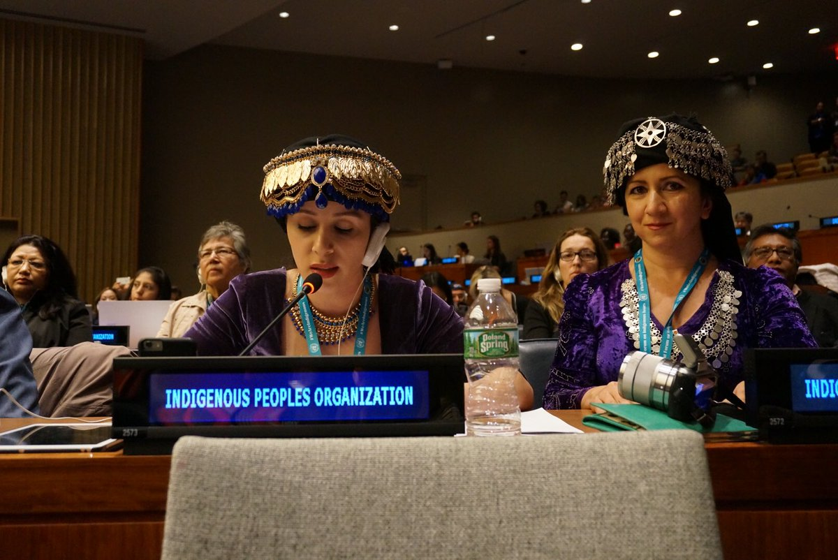 #Indigenous Assyrian rep demands land rights/compliance w/#UNDRIP in Iraqi Kurdistan region.#UNPFII15  @assyrianaid https://t.co/47DdQuB2DP