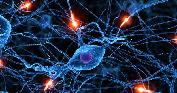 """Isolation Devastates the Brain"": The Neuroscience of SolitaryConfinement https://t.co/VVOGCQkZ9R https://t.co/djJJypyaLM"