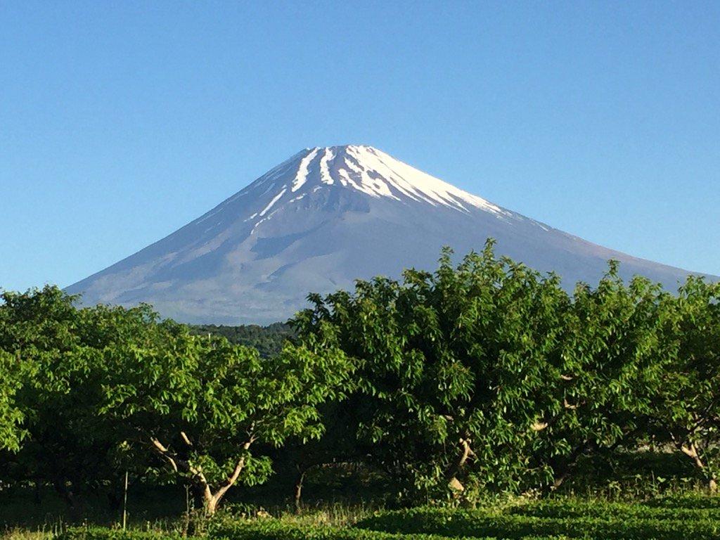 おはようございます。 昨夜からの雨も上がり、爽やかな朝をむかえました。 今朝の今の富士山です。 https://t.co/uXr1BcV8mP