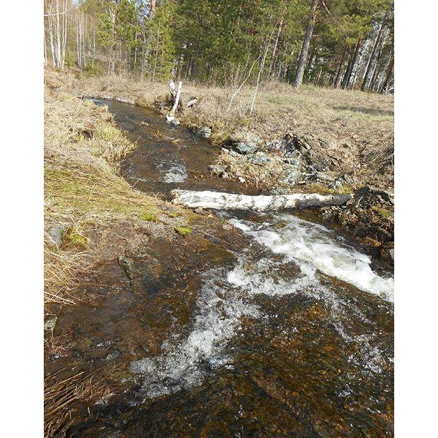 начал макет истока реки фото несколько