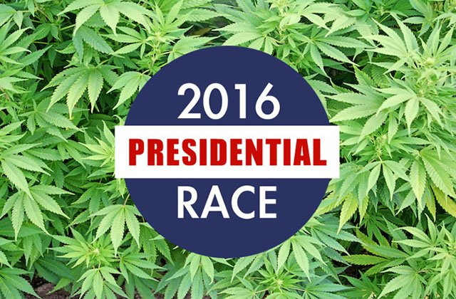 Survey Show Legal Marijuana Is More Popular Than Presidential Candidates