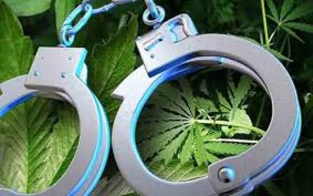In Post-Legalization CO, Racist Marijuana Arrests Persist