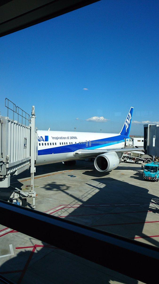 【現地情報】羽田空港に犬が4匹が乱入!わんわんを捕獲せよ! #空のダイヤまとめのカテゴリ一覧まとめまとめについて関連サイト一覧