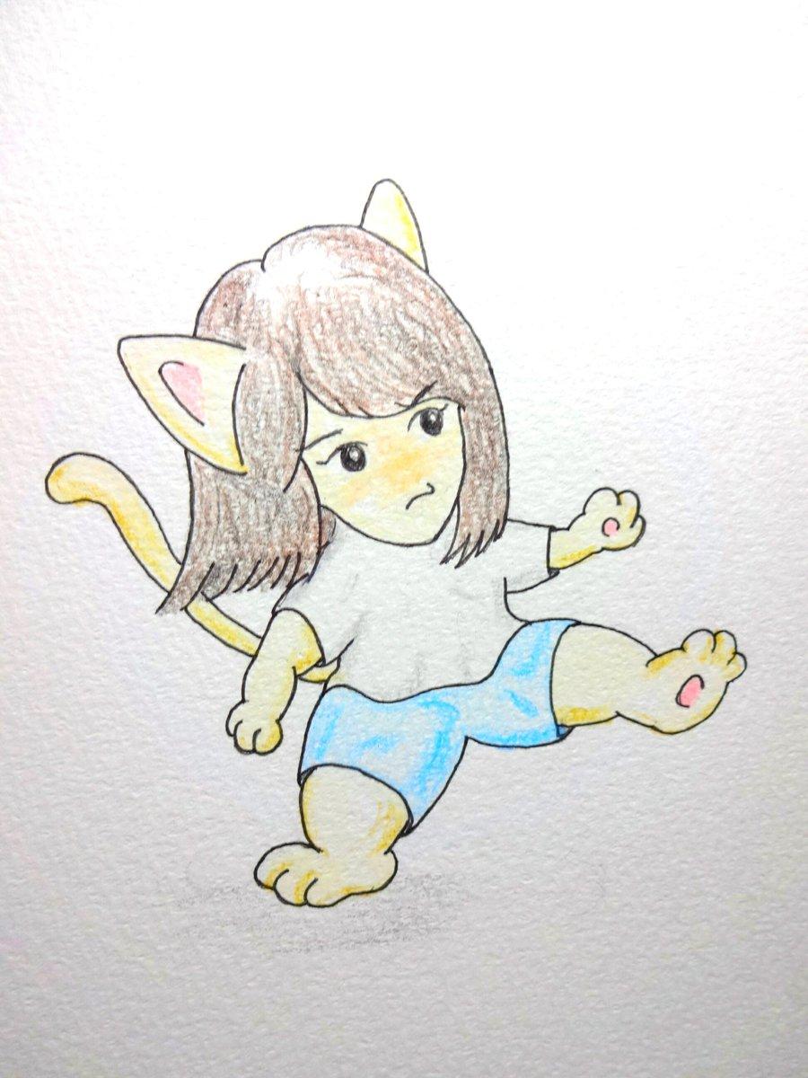 #シャア猫のこと