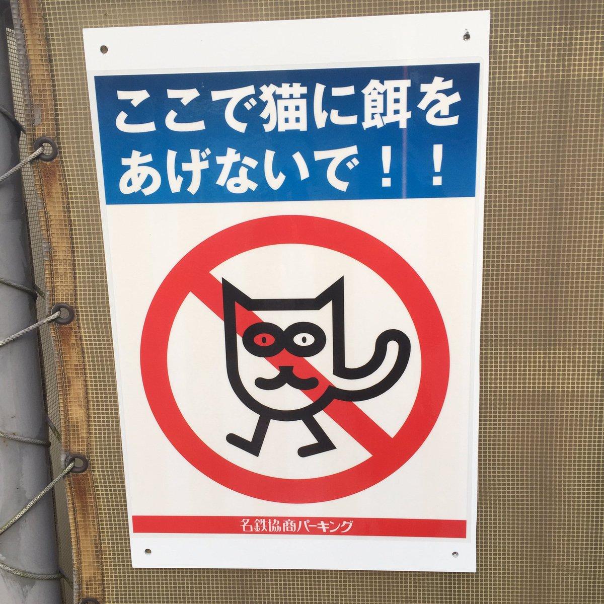 ねこ…? pic.twitter.com/cugthYQrAV