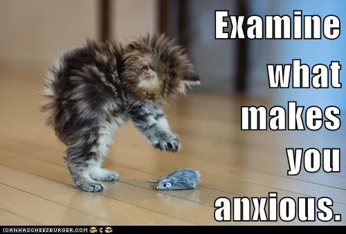Examine what makes you anxious. #growthmindset cat based on new Dweck interview https://t.co/mhUCzG0Sr6 #MindsetPlay https://t.co/MR2k2cMCl3
