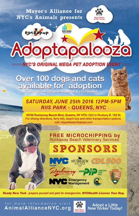 A new poster we designed for the @MayorsAlliance #Adoptapalooza! #graphics #marketing #graphicdesign https://t.co/8mA0sJKf5J