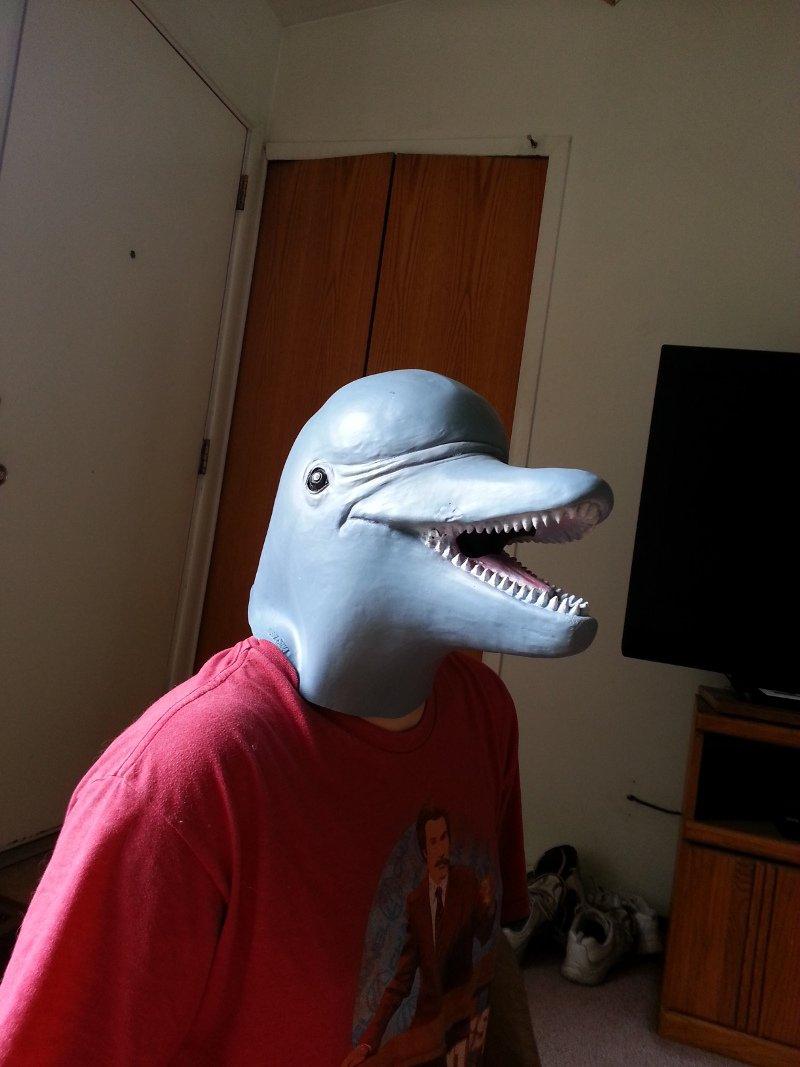 Dolphin Emulator (@Dolphin_Emu) | Twitter