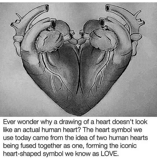 Rick Rocker On Twitter Two Hearts Beat As Onethe Origin Of