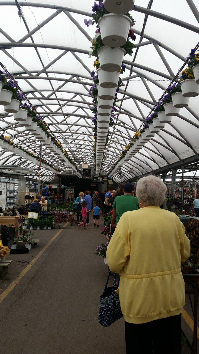 Long Long Of Shoppers  Hi Way Nurserypic.twitter.com/8uhv3LCPkU U2013 At Hi Way  Garden Center