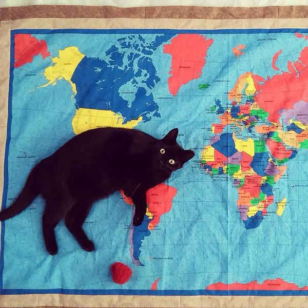 Cats and quilts what could go wrong? Thank you @raemoch for this lovely picture of Shadow on a map quilt! #caturday https://t.co/RG69pMqjhL