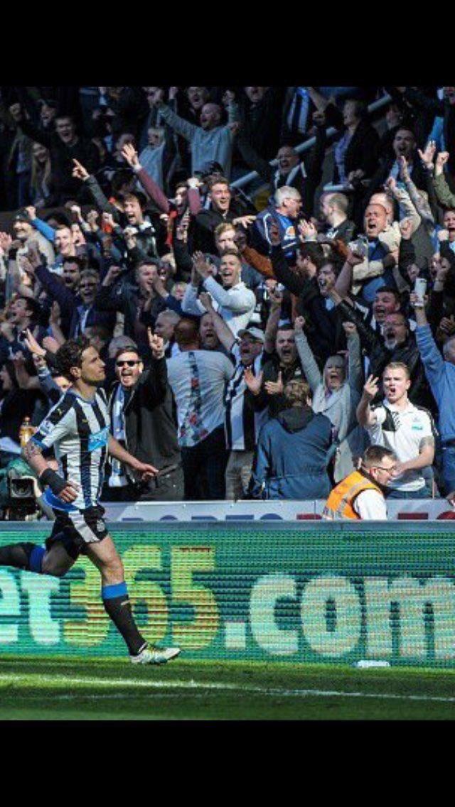 Newcastle - Tottenham CihAYxRWUAAmGQF?format=jpg&name=large