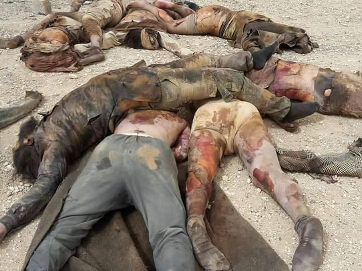 Сирийские иллюстрации