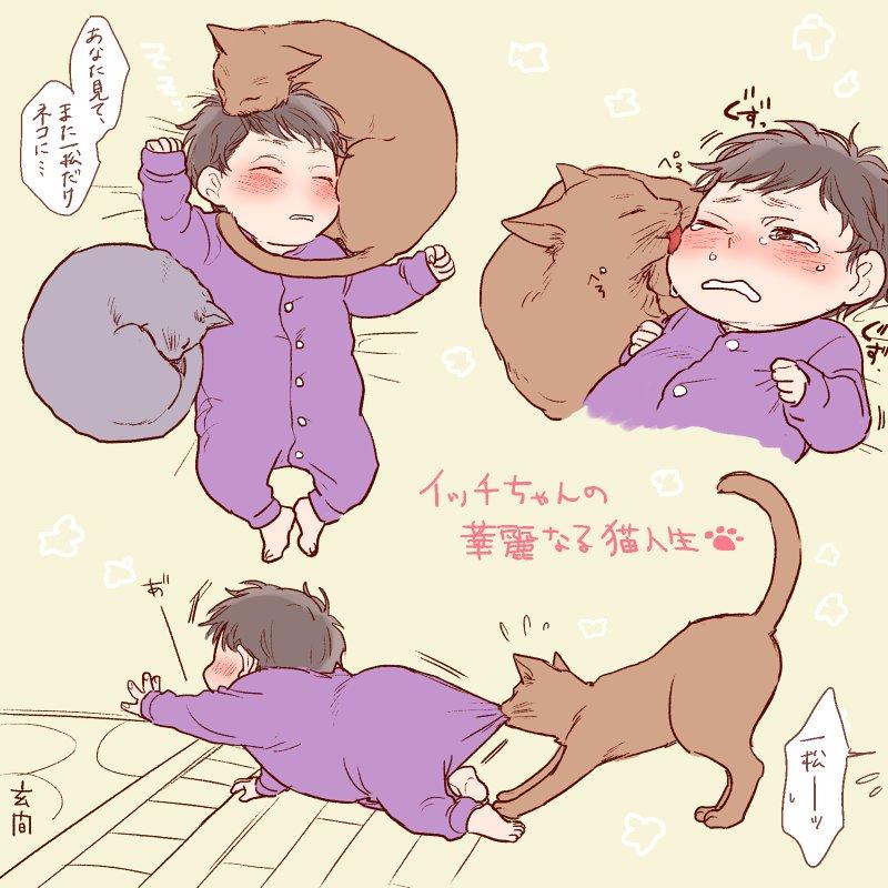 イッチちゃんの華麗なる猫人生
