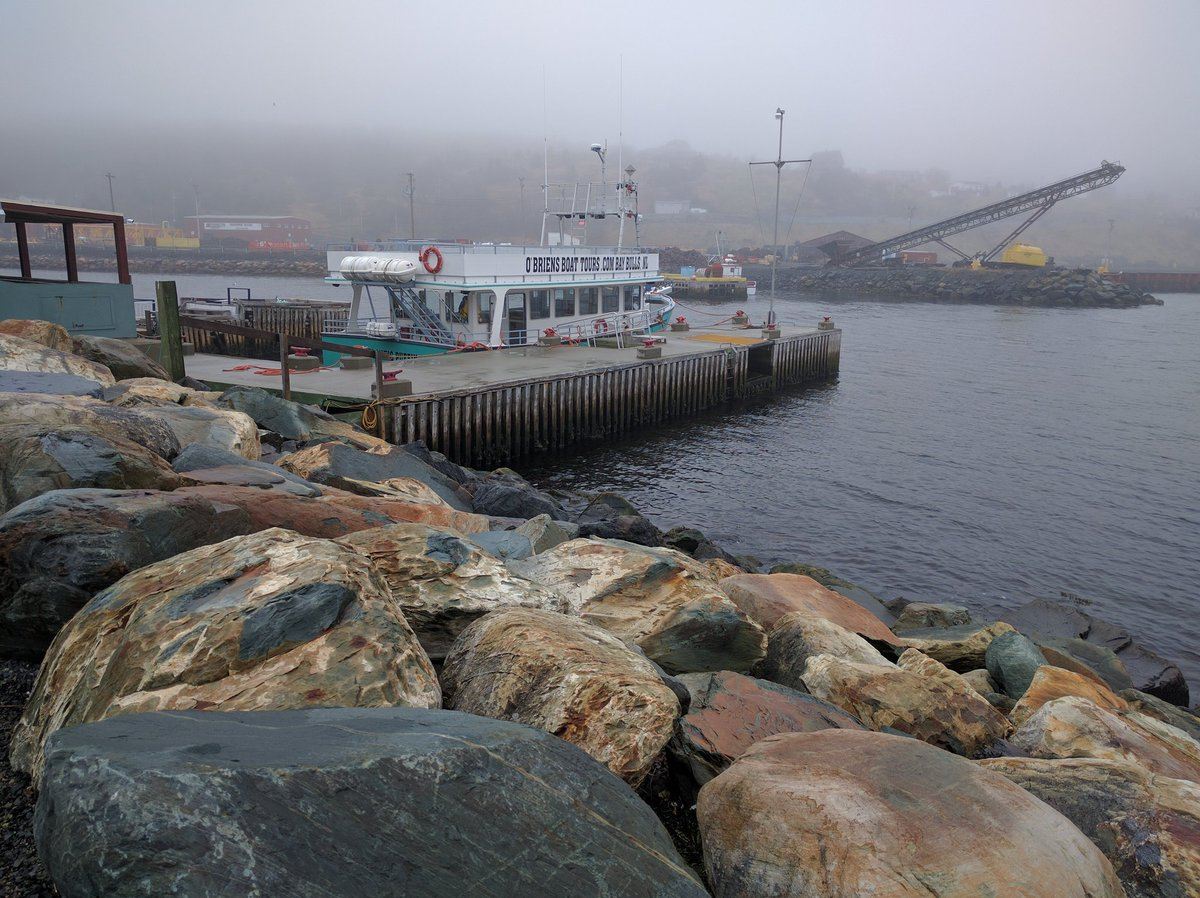 Foggy day at O'Brien's Boat Tours in St. John's, Newfoundland