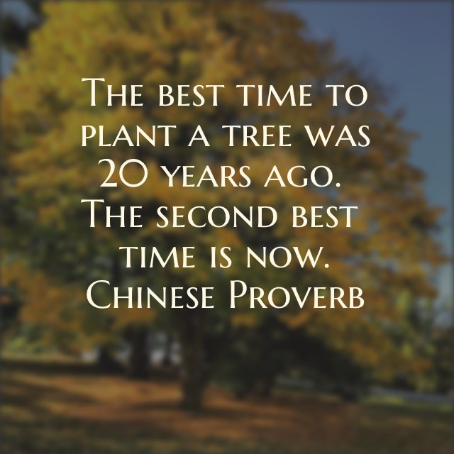 "Linda Freeman on Twitter: """"The best time to plant a tree..."" ~Chinese Proverb #quote #inspiration #motivation… """