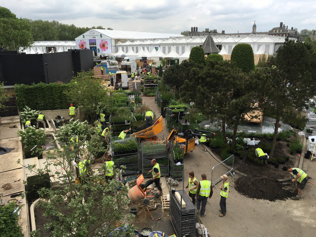Busy, busy bunnies #RHSChelsea @The_RHS https://t.co/H416L0d8L3
