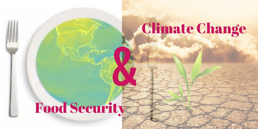 Thumbnail for Meeting Global Food Security Challenges in the face of Climate Change