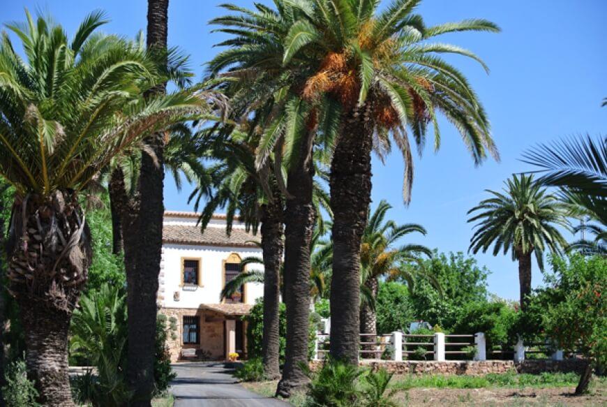 Entrada a la Finca Quinta san José, en Linares.