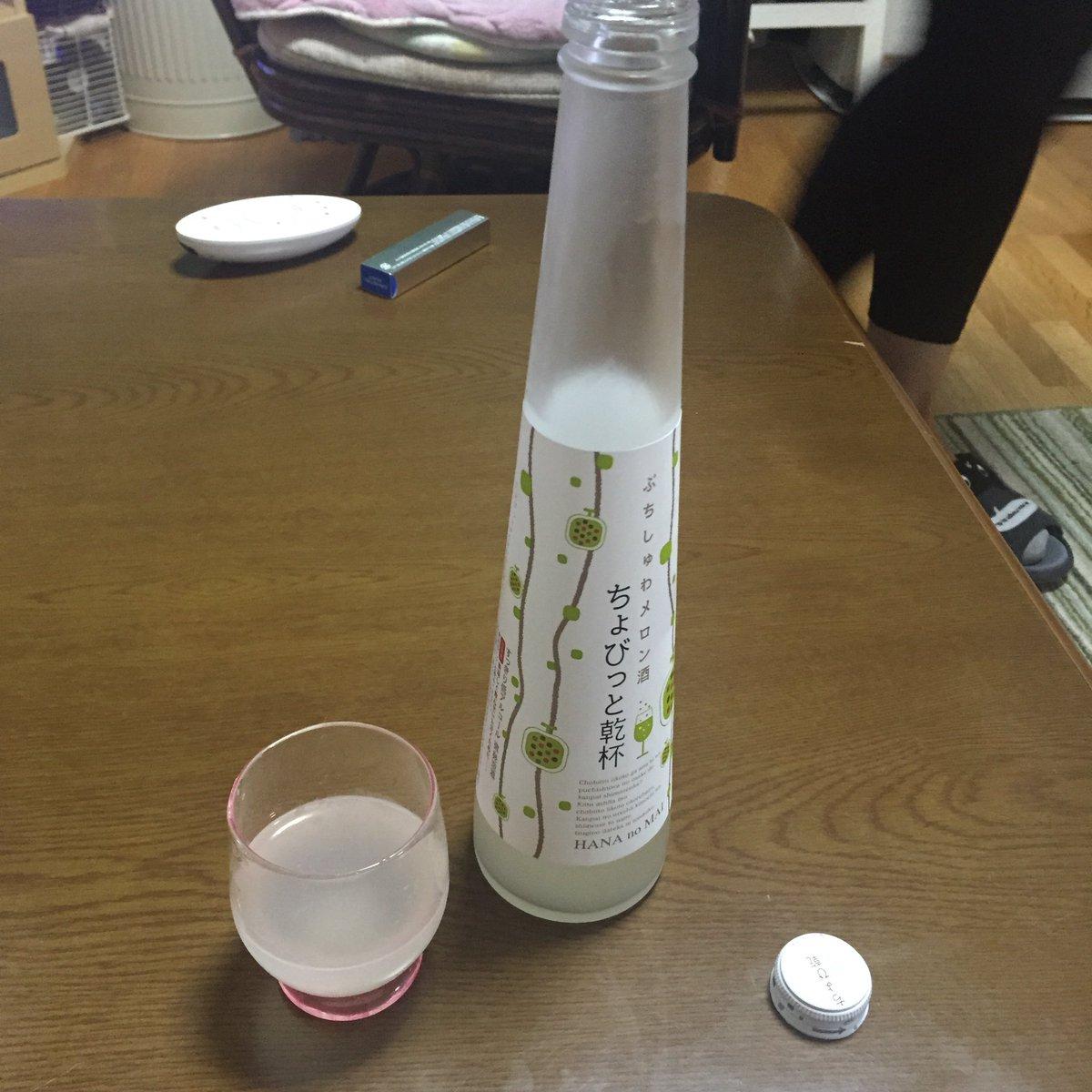 この酒、メロンっていうか完全に「ウリのぬか漬け」の味なんですけど