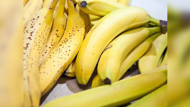 Shopper finds spiders 'flooding' from bananas