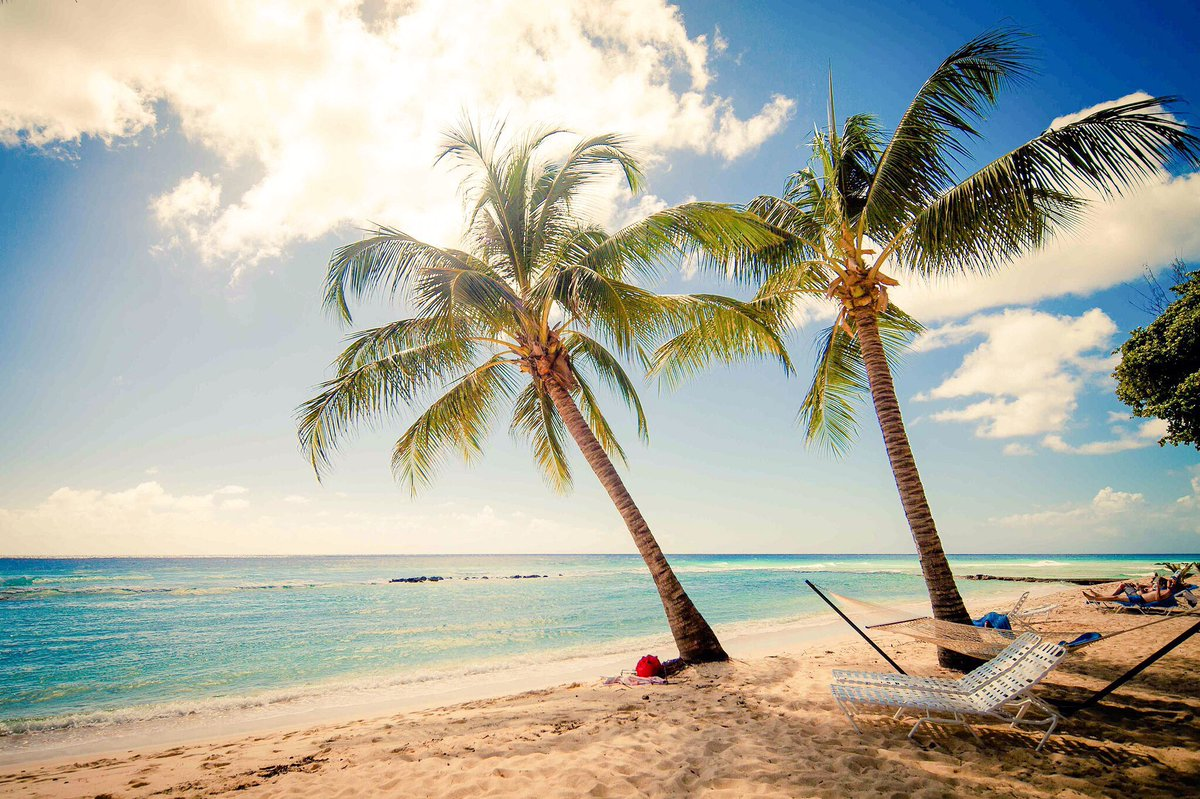 SugarBay beach is calling my name! #Daydreaming of @barbados.. Cropover see you soon! https://t.co/OBsJAC16Mb https://t.co/rFkZTVhtn6