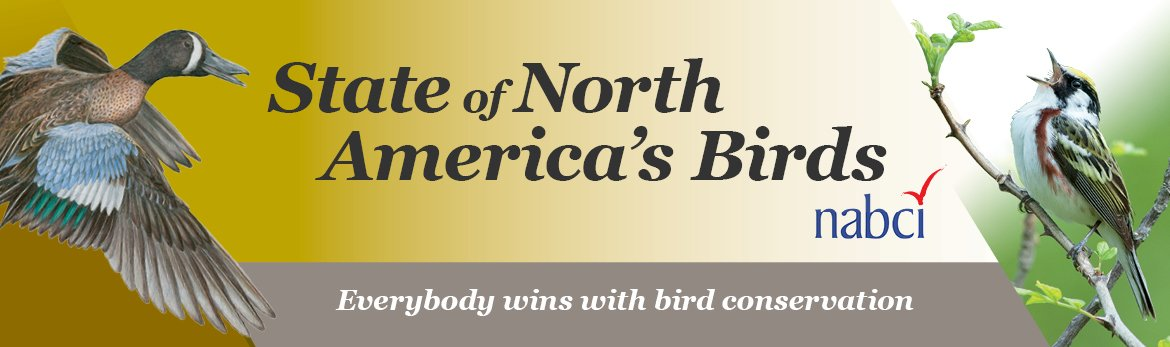 The important role of habitat protection in conserving NA's birds https://t.co/0CgrDOBO14 #StateoftheBirds #BirdYear https://t.co/R54E8zPH08