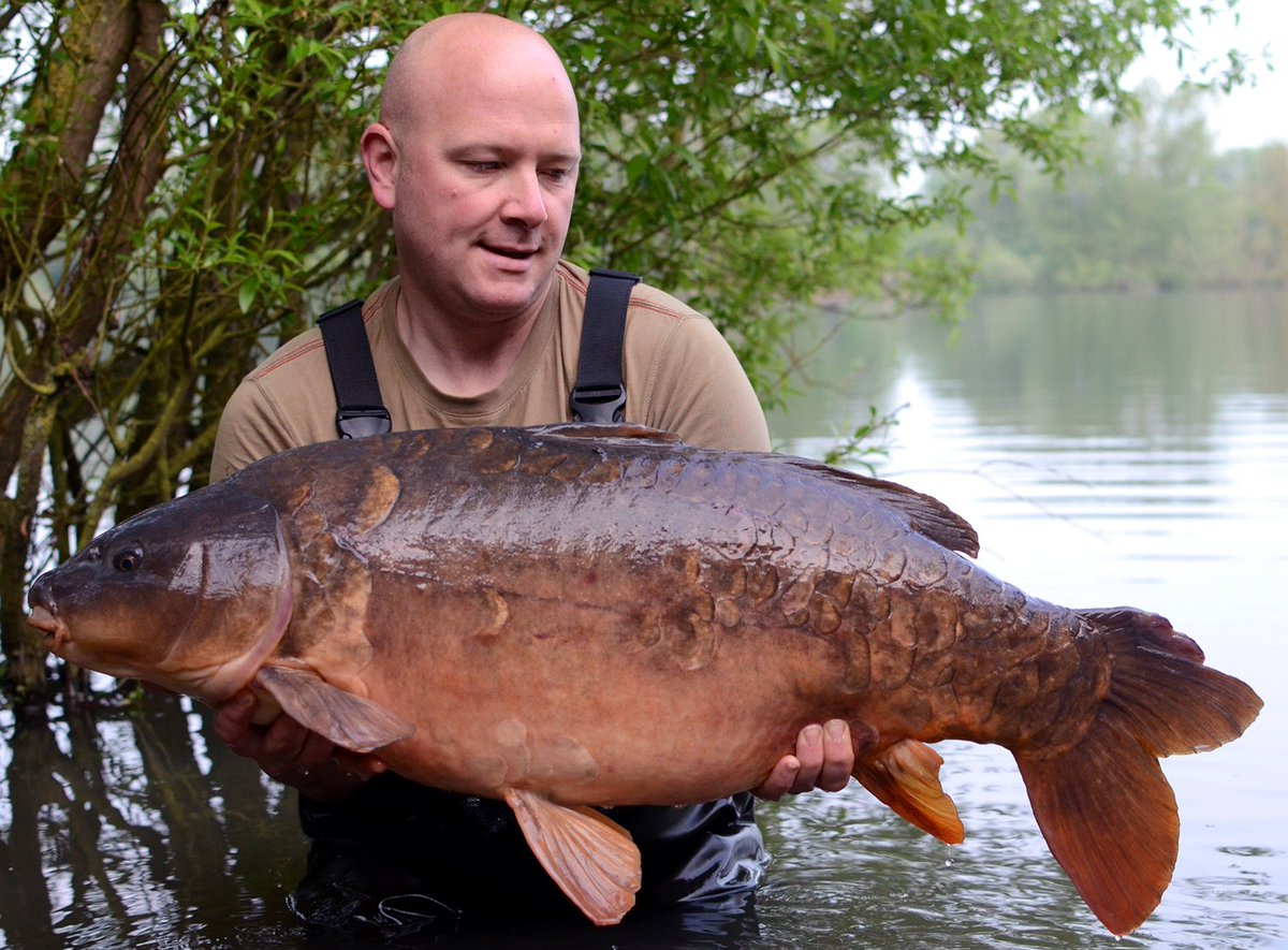 Core Baits On Twitter Dean King With A 34lb 4oz Linch Hill Mirror The C4 Test Bait Https T Co Gqjhxrkvmx