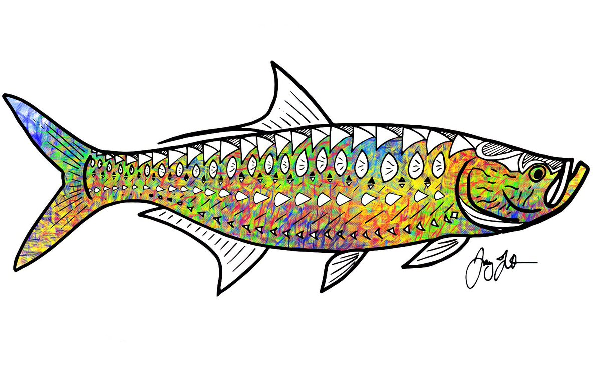 tarpon fish clipart wwwimgkidcom the image kid has it