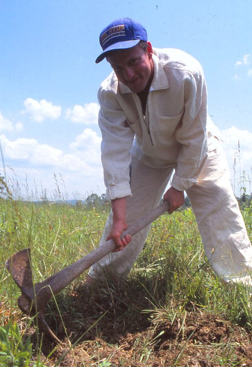 When Woody Harrelson Planted Four Hemp Seeds