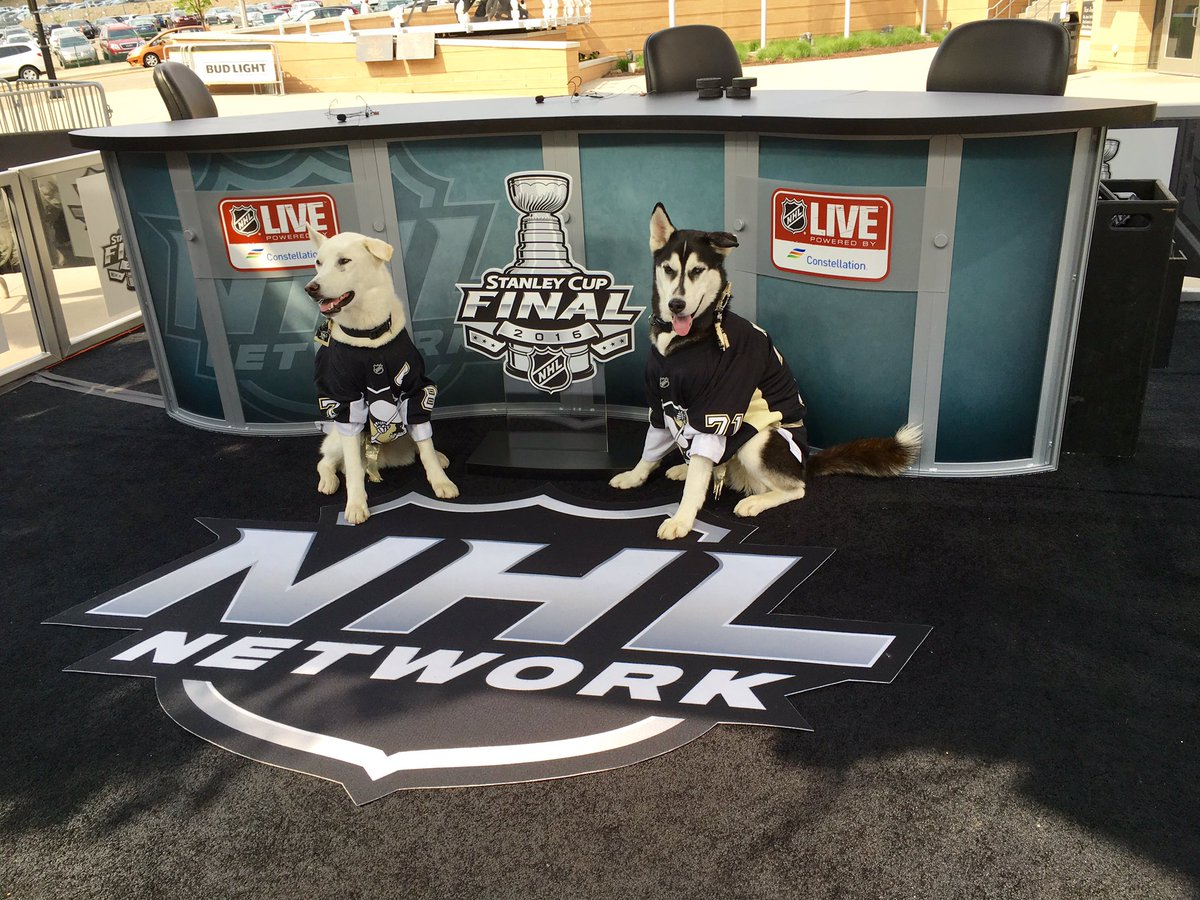 YOU GUYS. There are puppies on set. I repeat, puppies on set. #StanleyCup https://t.co/IHwHQ1DEN4