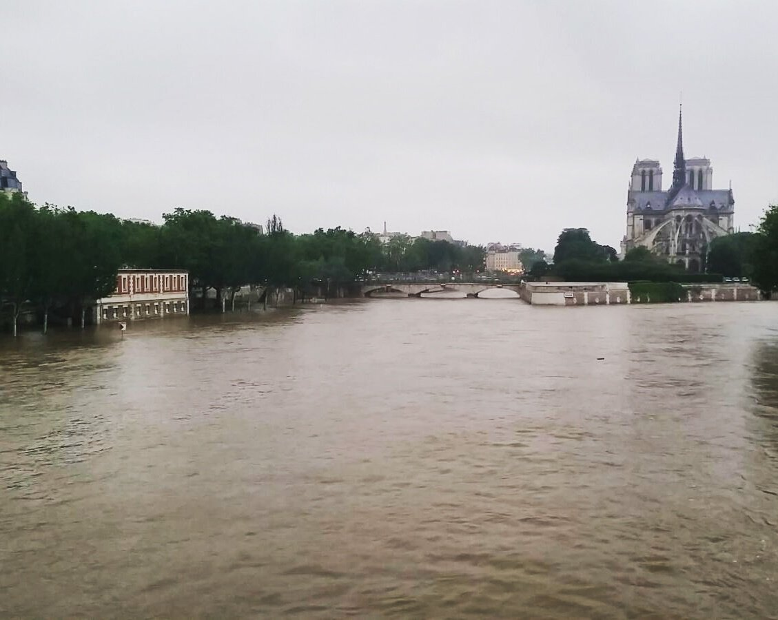 Yesterday's view of the Seine #Paris ❤ #Seine https://t.co/Fz1Mbk0LRv