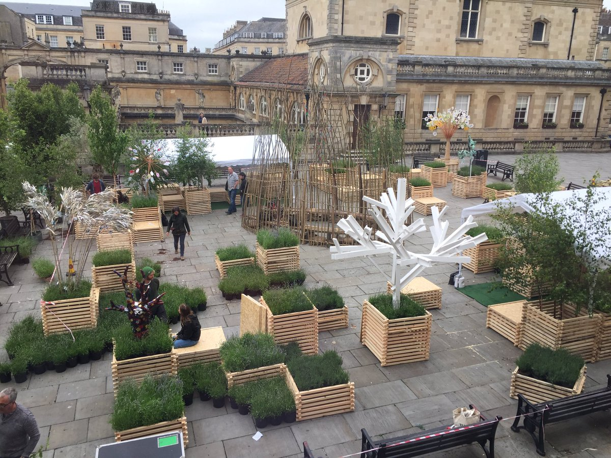 Very excited by the forest that is growing in Kingston Parade @forestimaginatn