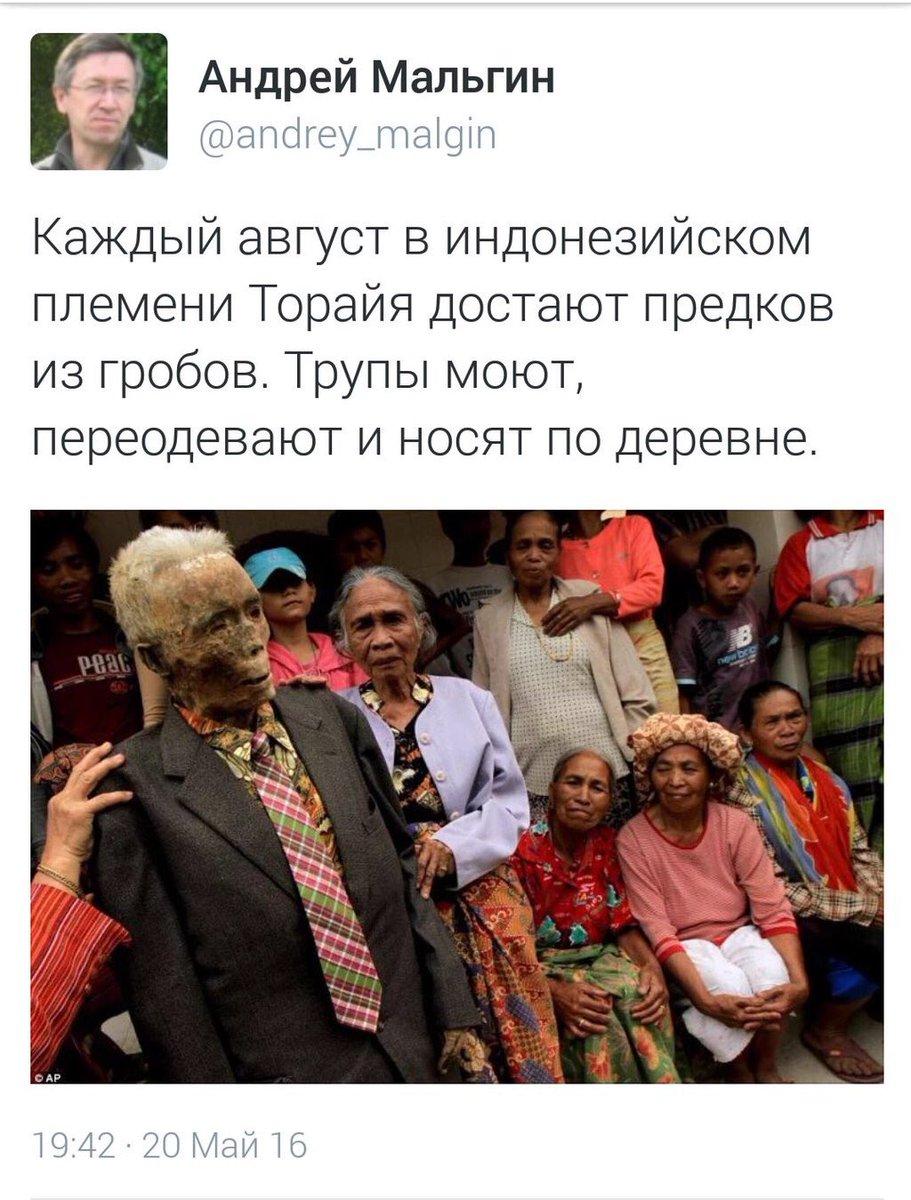 """Украина и Россия не могут согласовать формат и численность международной полицейской миссии на Донбассе, - """"Зеркало недели"""" - Цензор.НЕТ 3635"""