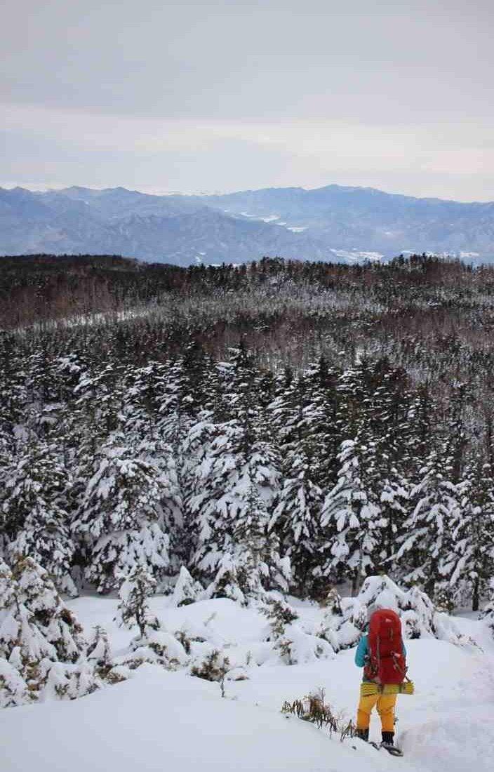 今更だけど今年初めて挑戦した雪上キャンプ@八IヶI岳♪ -15℃の世界でタイガーちゃんがパキッと割れそうで怖かったけど、ご来光をバックに格好良く撮れて満足(*´﹀`*)  #タイバニ登山部