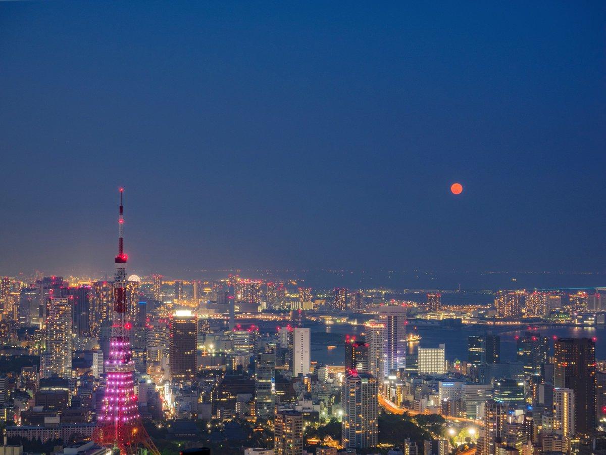 今夜は満月。スカイデッキでは赤い月と東京タワーがセットで見えています。 #六本木天文クラブ
