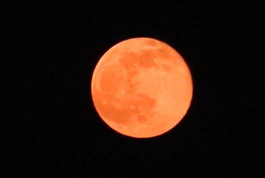 皆さんのところでも満月見えてますか?のぼりたてはかなり赤い月でした。 https://t.co/aqvW3wACM7