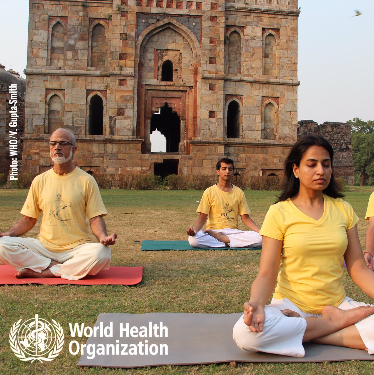 WHO works w/ the Govt of #India to promote quality, safety & effectiveness of traditional & complementary #medicine