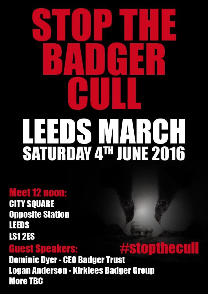 Anti-badger killing poster