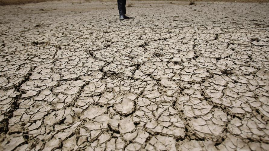 (عطشان مع إني بلد النيل) .. الجفاف يضرب آلاف الأفدنة الزراعية في مصر