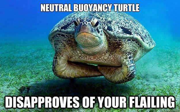 To celebrate #WorldTurtleDay, we're sharing one of our all-time favourite turtle posts. RT if you love this too! https://t.co/n2Ikq0tw4o