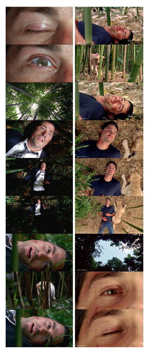 If you can believe it, 6 years ago today we saw Jack's eye close and the adventure called #LOST came to an end. https://t.co/w8ji4Djoy1