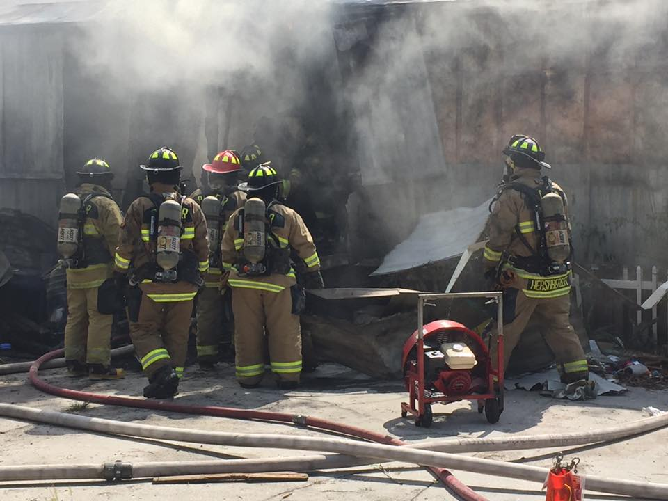 Dog dies in Bartow mobile home fire
