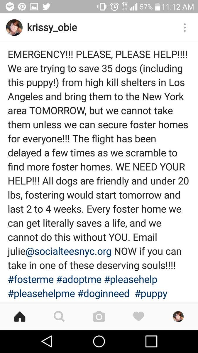 Help help help please please?