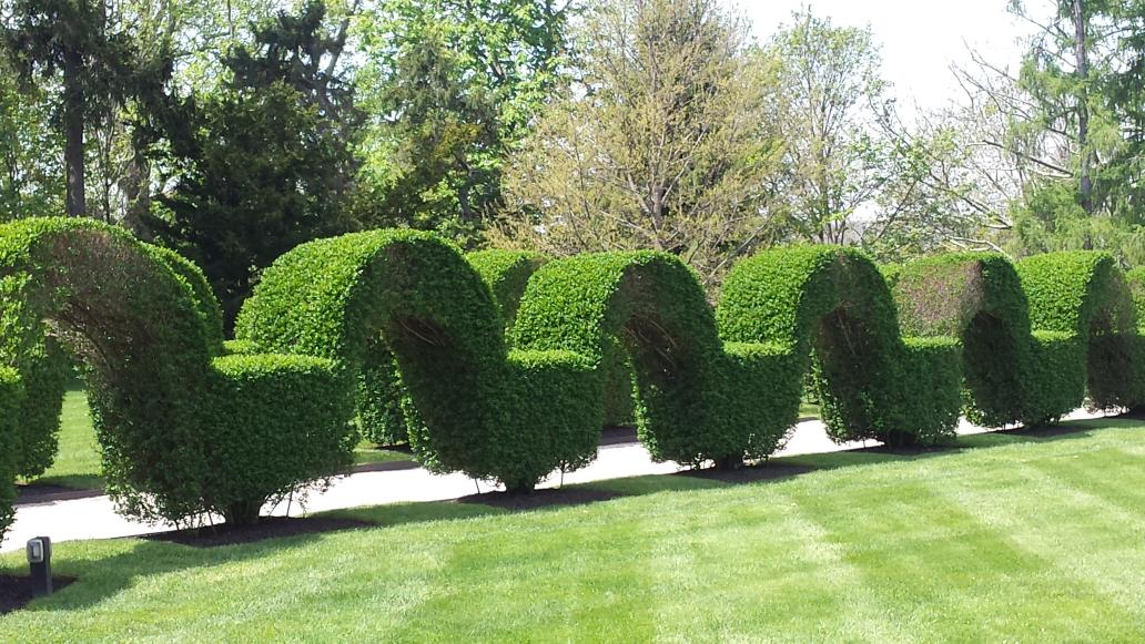laura tortella on twitter love this arched boxwood hedge at green animals topiary garden in portsmouth ri inspiring gardens travel - Green Animals Topiary Garden