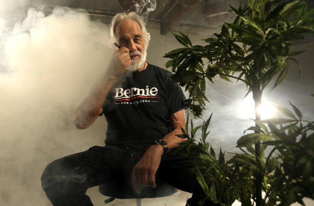 Tommy Chong Slams Bernie Sanders' Campaign After Rally Snub