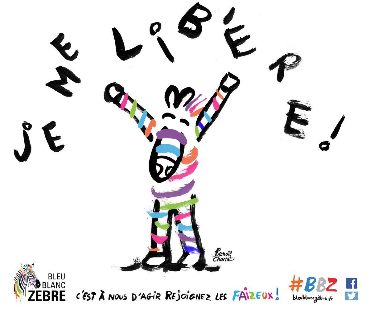 Adrien gutierrez gutierrezadrien twitter for Alexandre jardin zebre