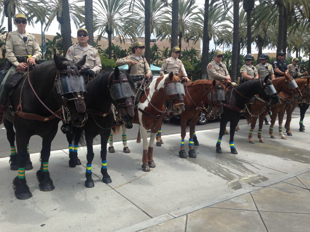 Ventura County Sheriff mounted patrol all the way in Anaheim for @realDonaldTrump https://t.co/2p3CDTLNz2