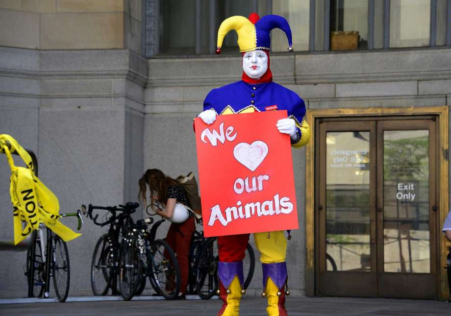Clowns beg lawmakers not to ban animal shows...