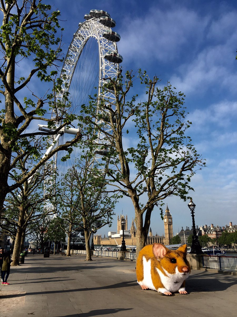 OMG! A #GiantHamster just whizzed by me on the South Bank in London https://t.co/acEtWK0gK0